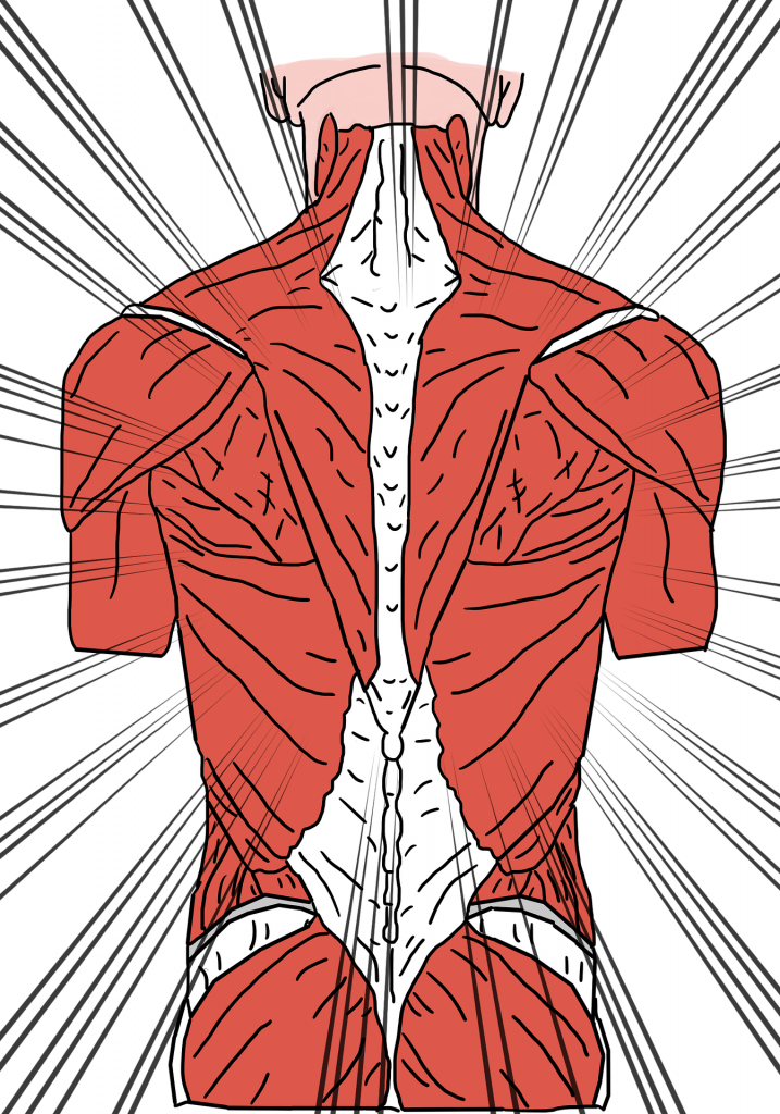 Pain Neuroscience Deconditioning Muscles Fascia